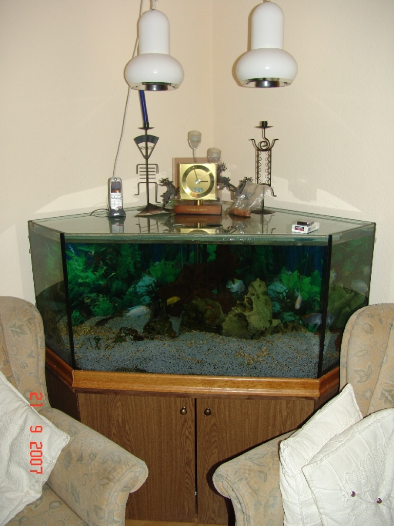 eck aquarium mit unterschrank komplett tiere krefeld. Black Bedroom Furniture Sets. Home Design Ideas